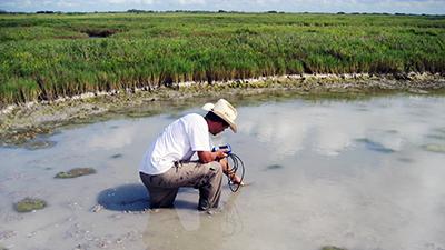 Assess habitat quality