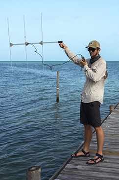 Volunteer using scientific instruments to study sharks in Belize