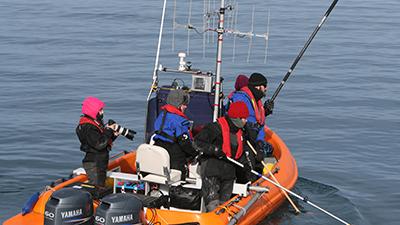 Earthwatch volunteers collect behavioral observation data (C) Filipa Samarra