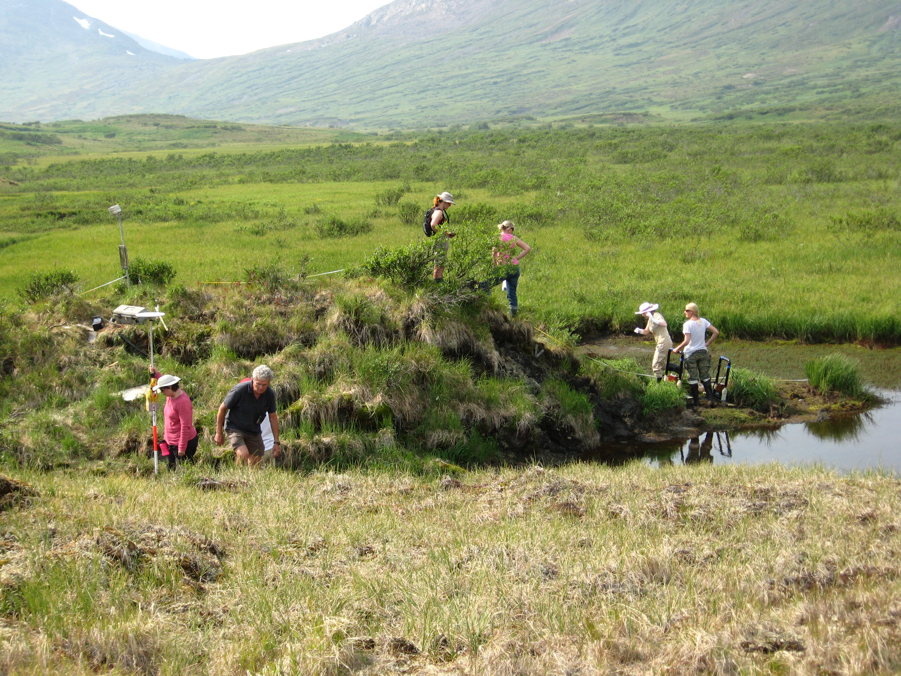 Earthwatch volunteers doing fieldwork