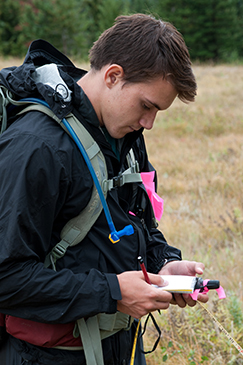 Volunteer recording data while conducting field research