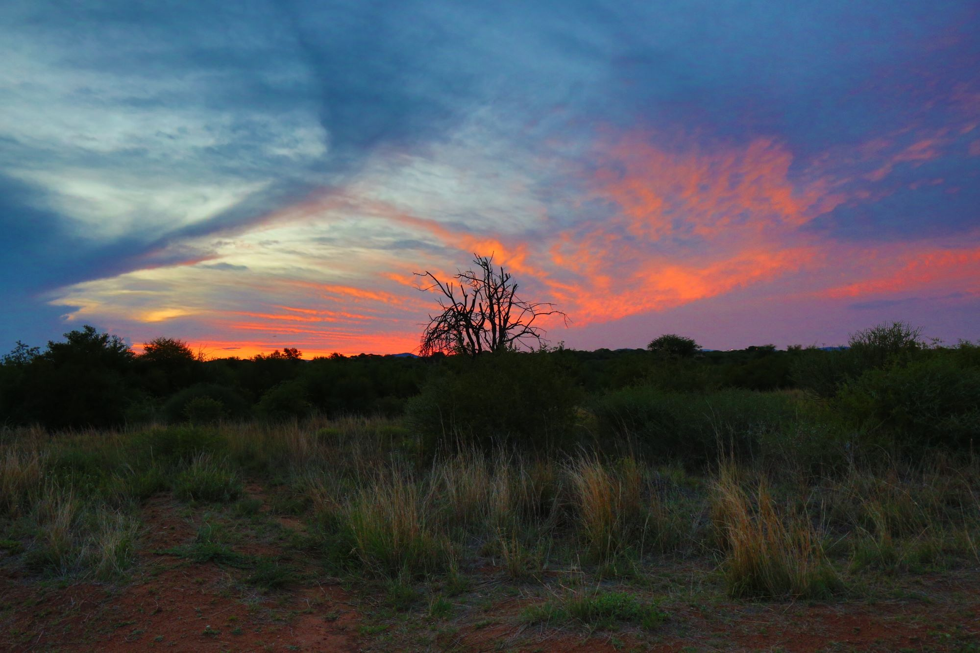 south african sunset - alex kallend