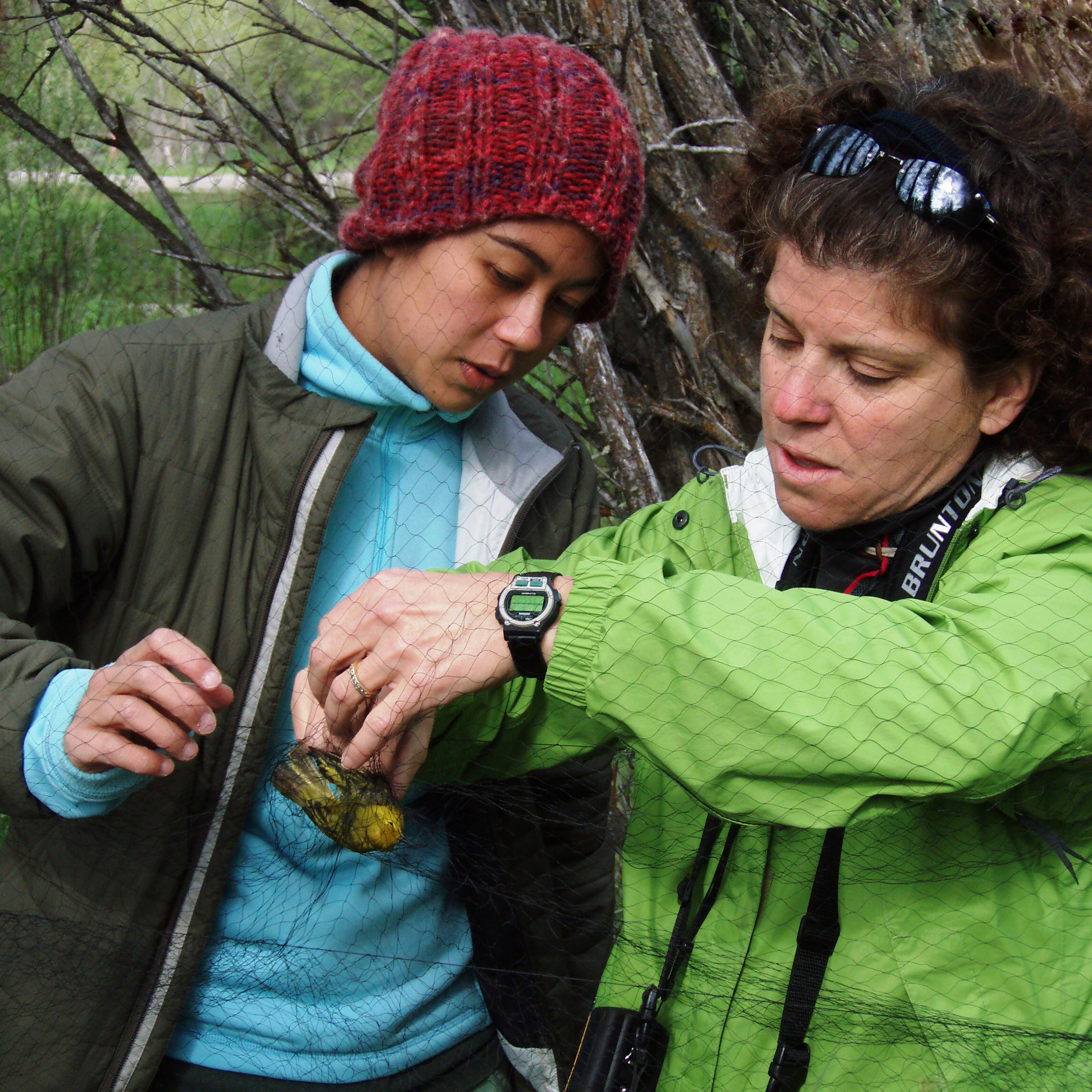 Find out how an Earthwatch expedition can help teachers, teens, and school groups connect with nature through hands-on science and cooperative conservation, or learn how to apply for one of our student or teacher fellowships.