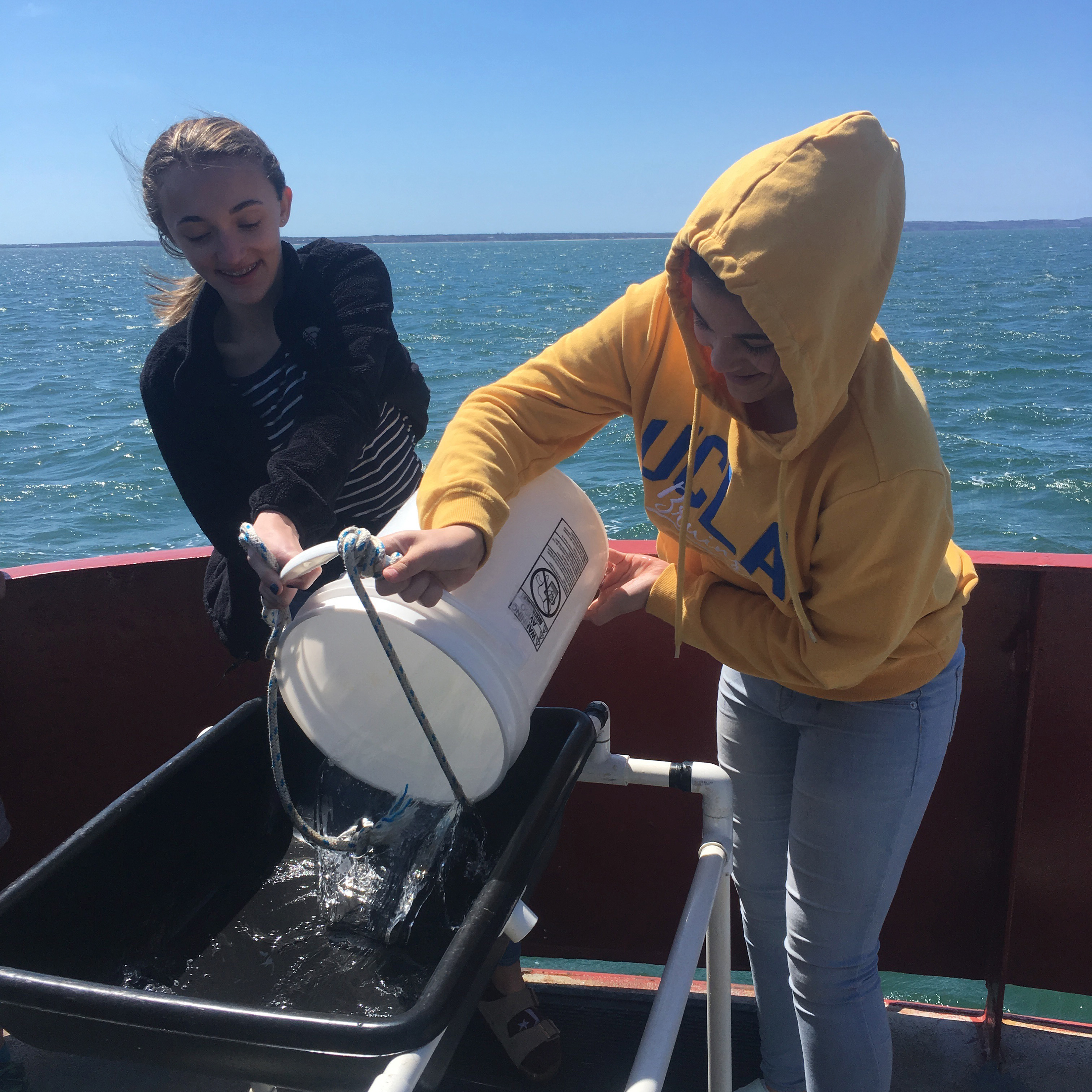 Earthwatch's Girls in Science fellows have built and deployed underwater microphones and analyzed dolphin acoustic data with sophisticated sonic software—helping scientists from Woods Hole Oceanographic Institution better understand marine mammals and prevent mass strandings in Cape Cod, Massachusetts.