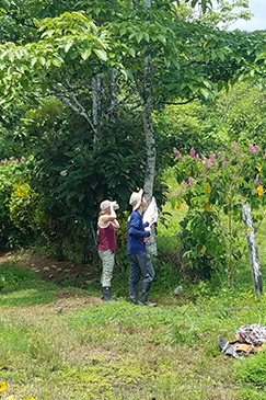 Earthwatch volunteers observe plant species