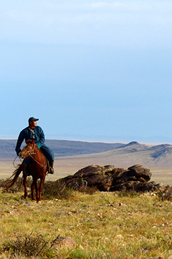 A man on horseback scans the plains for wildlife