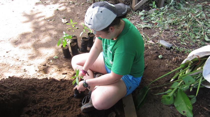 A volunteer plants seedlings (C) Dana Salomon