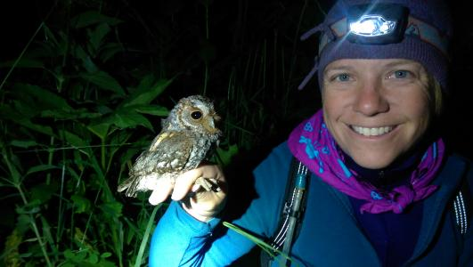 An Earthwatch volunteer holds an adult Flamulated Owl after banding on the expedition Following Forest Owls in the Western U.S.