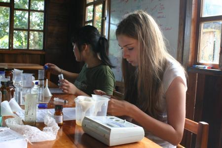 earthwatch volunteers work in the lab