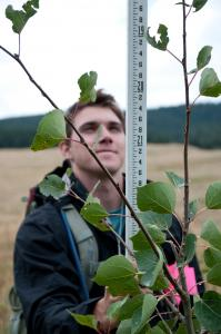 earthwatch volunteer measures vegetation in the rockies