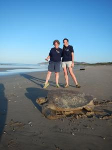 Earthwatch volunteers and a leatherback sea turtle