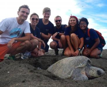 earthwatch volunteers pose with a leatherback turtle