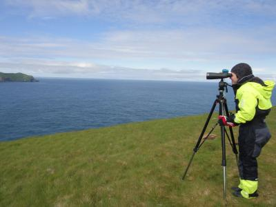 An Earthwatch volunteer monitors the ocean from land by telescope (C) Elise Begin