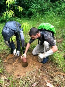 Aid in reforesting the reserve, helping to grow seedlings and planting them within the forest