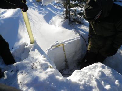 Volunteers measuring snow pack (credit Billy)