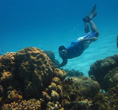 Take action to protect marine habitats, conserve biodiversity, and promote sustainable livelihoods.