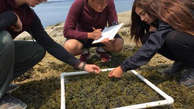 Teen volunteers on an Earthwatch Expedition