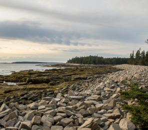 climate change at acadia national park