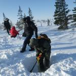 climate change at the arctic's edge - digging in the snow