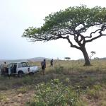 Volunteers gathering on an African wildlife reservation