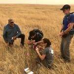 Volunteers collecting data in the field
